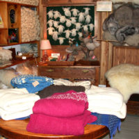 Gift-Shop---sweaters-(Linda-Lambeth)