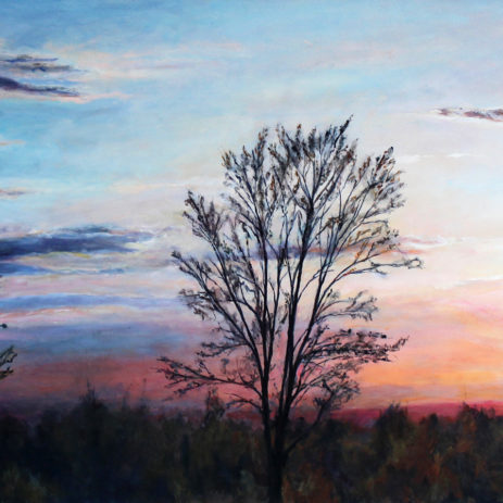 "Freed By Dawn 2015 • oil on canvas • 24""×48"""