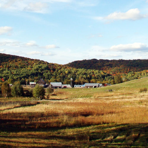 St. Benedict's Acres in the Fall