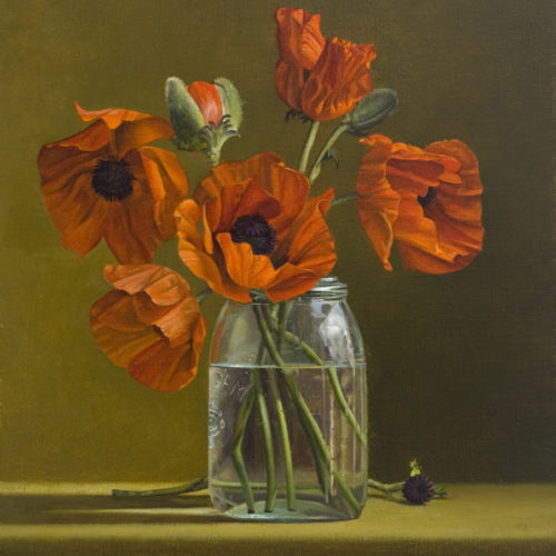Surprenant-Red_Poppies